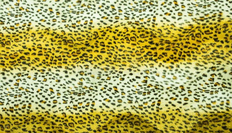 Textura hermosa de la piel del tigre fotografía de archivo