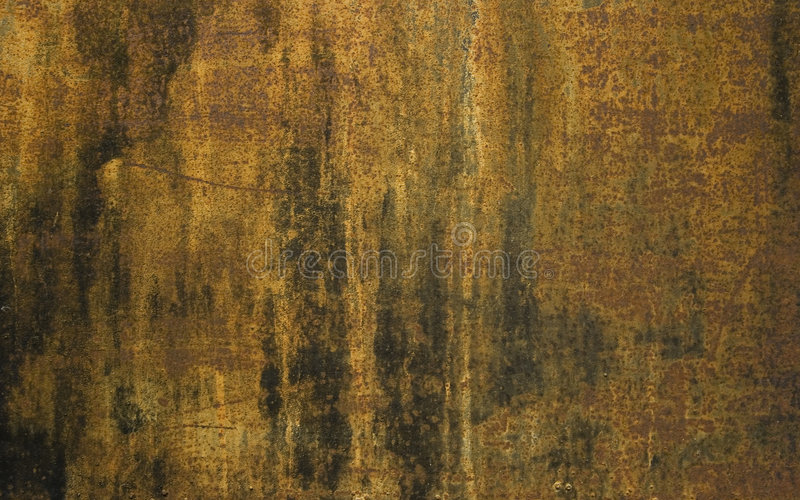 Textura II del moho foto de archivo
