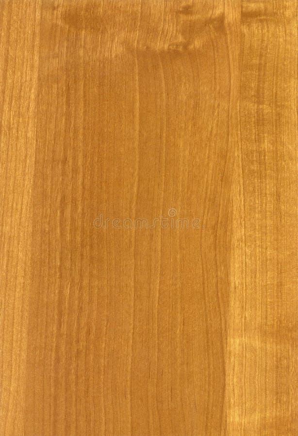 Textura ligera de madera del aliso del HQ fotografía de archivo