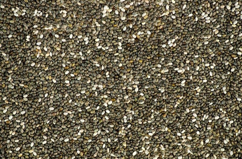 Textura macra del fondo de las semillas negras del chia fotografía de archivo libre de regalías