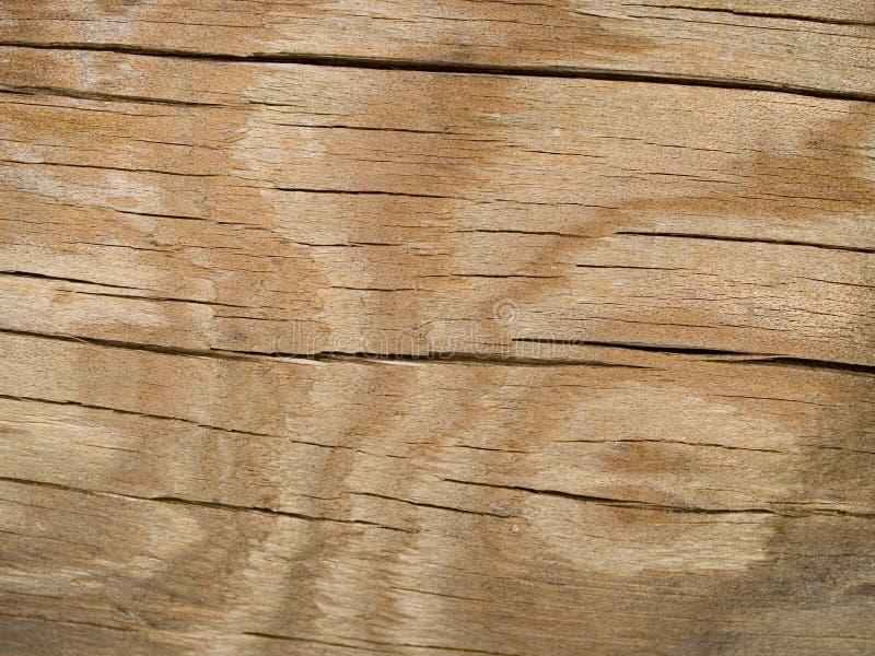 Textura macra - madera - quebrada con el modelo foto de archivo