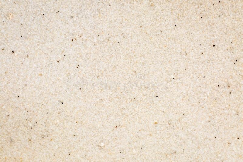 Textura macro branca da grão de areia da praia de Florida fotografia de stock royalty free