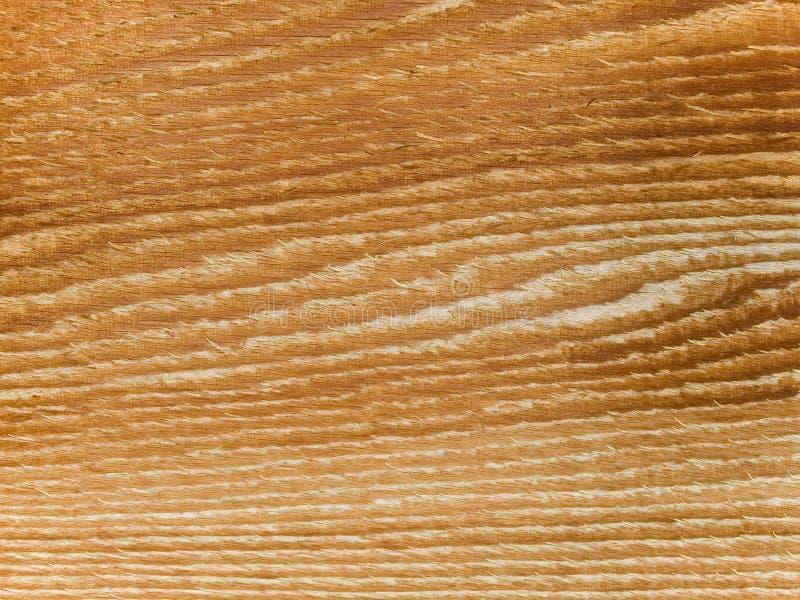 Textura macro - madeira - grão fotos de stock royalty free