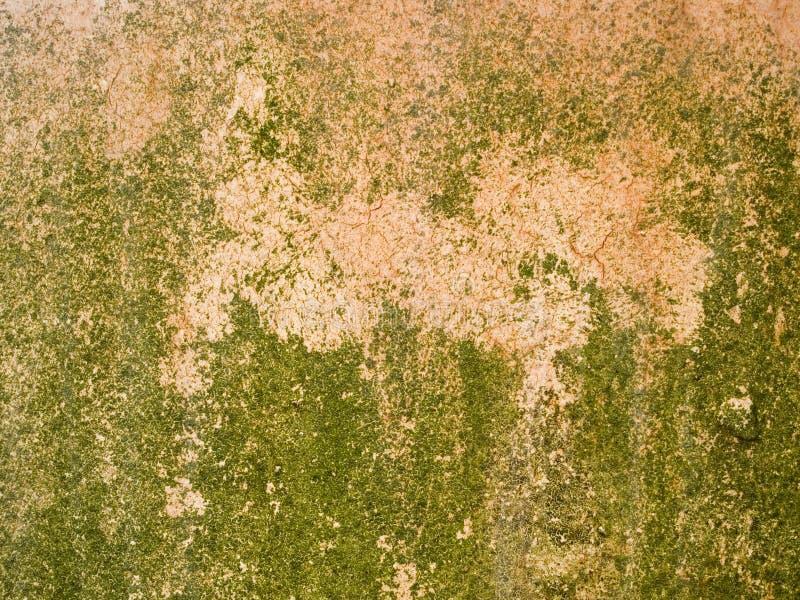Textura macro - metal - metal e pintura oxidados da casca foto de stock