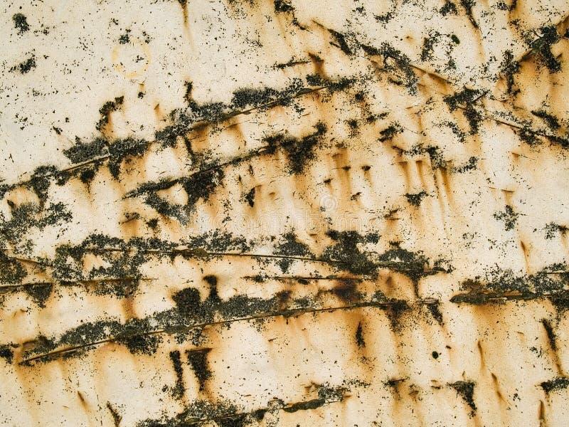 Textura macro - metal - riscada e oxidada fotografia de stock royalty free