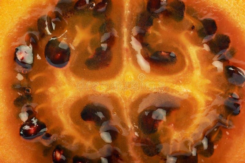 Textura madura da carne do fruto do tamarillo imagens de stock