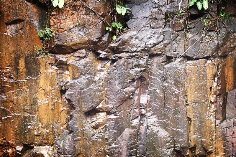Textura mojada de la roca foto de archivo
