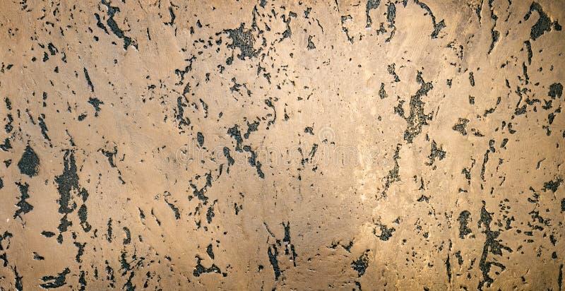 Textura natural bonita do carvalho de cortiça Fundo da tampa da cortiça Textura de madeira foto de stock