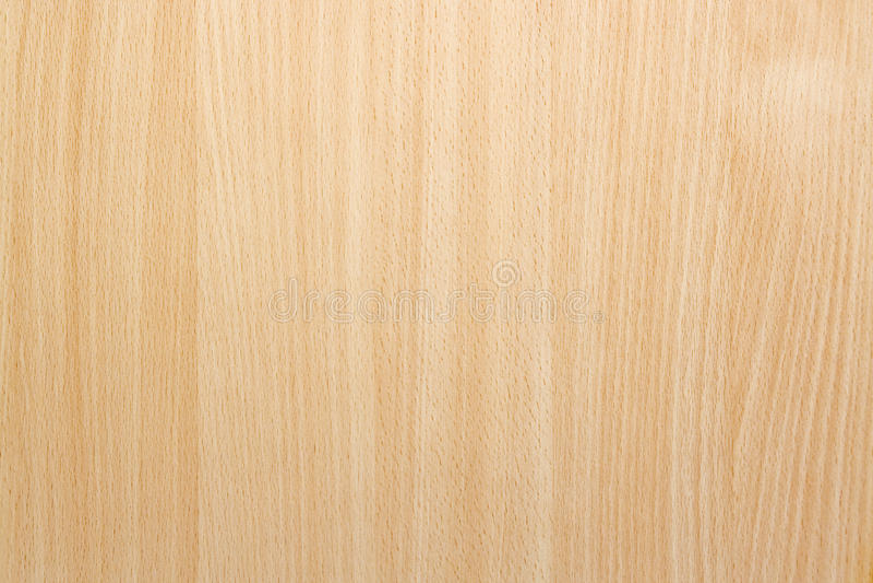 Textura natural do fundo da madeira de faia foto de stock
