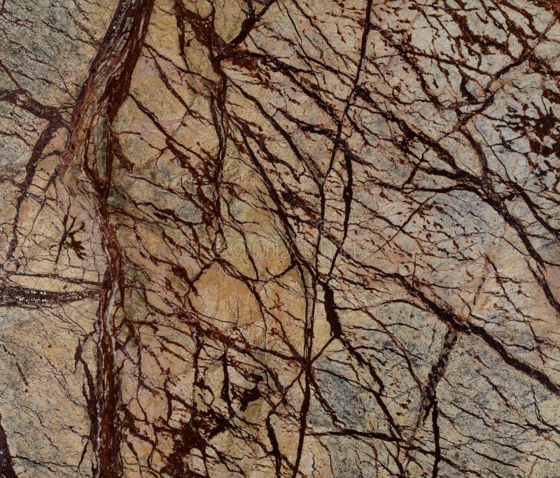 Textura natural do mármore de Forest Brown da chuva imagens de stock