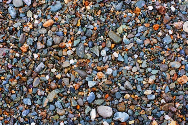Textura natural. Seixos. Variação uma. fotografia de stock royalty free