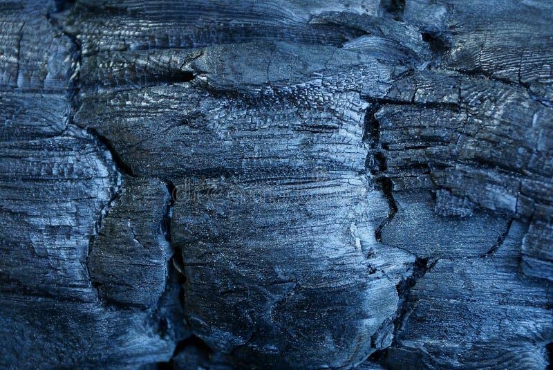 Textura negra del carbón de leña en un árbol carbonizado foto de archivo libre de regalías