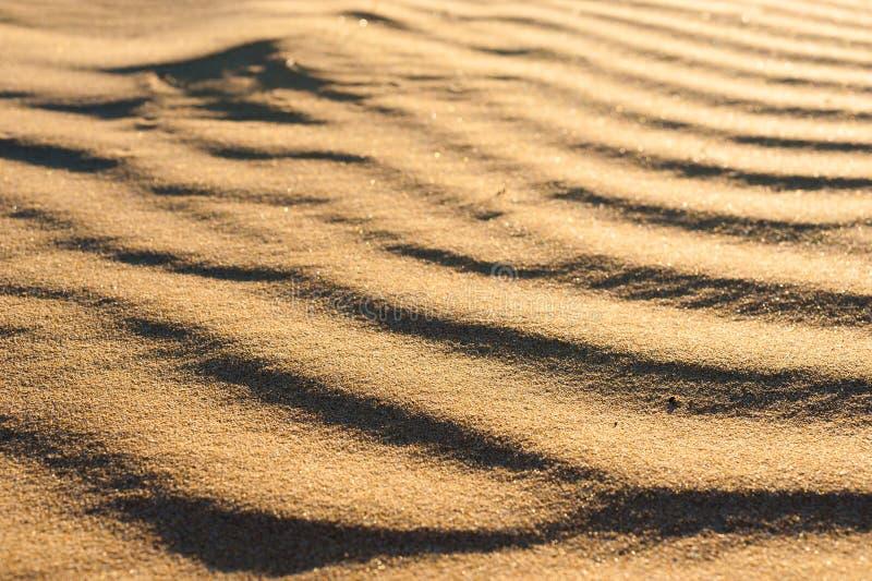 Textura ondulada de la duna imagenes de archivo