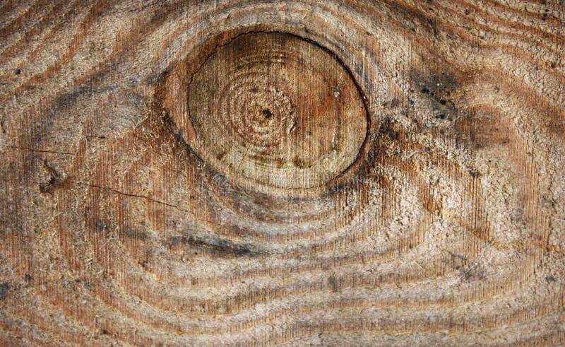 Textura ou fundo da madeira com um teste padrão natural foto de stock royalty free