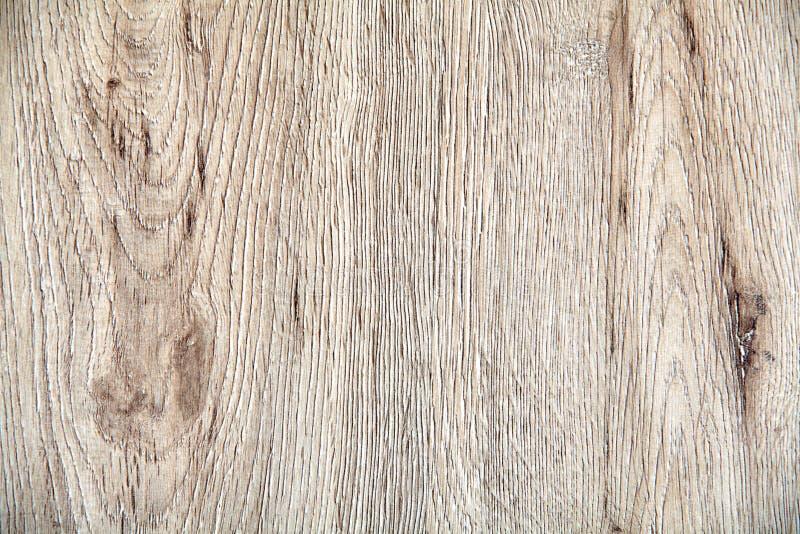 Textura para o fundo, placa de madeira, carvalho descorado fotos de stock royalty free