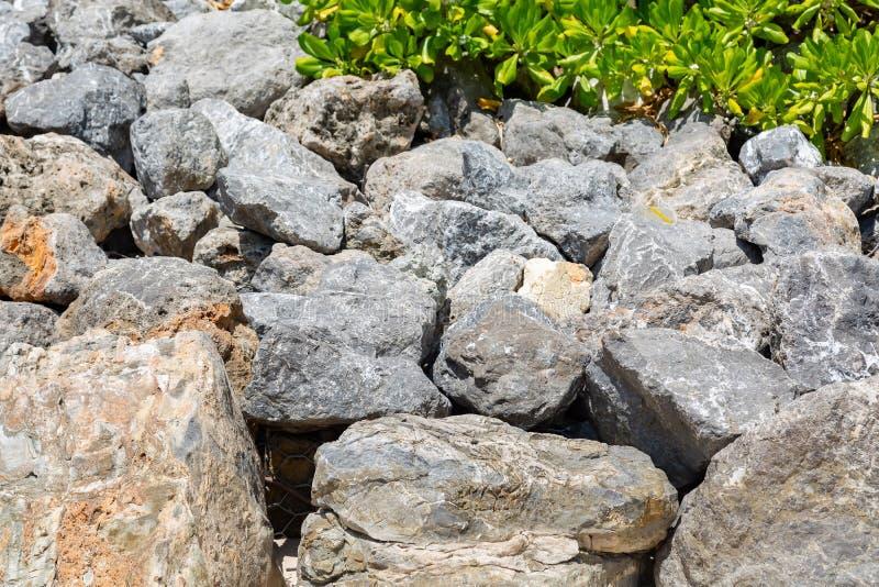 Textura Pedras das rochas de Gray Big no cerco da mar? da praia Arbustos do dia ensolarado na parte superior fotos de stock