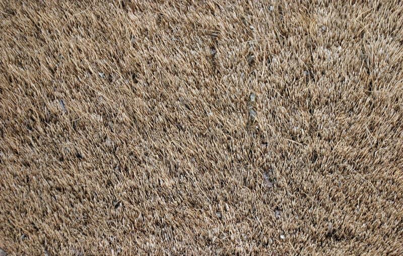 Textura peludo do tapete imagem de stock