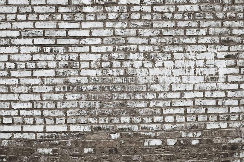 Textura pintada viejo gris del fondo de la pared de ladrillo imagenes de archivo