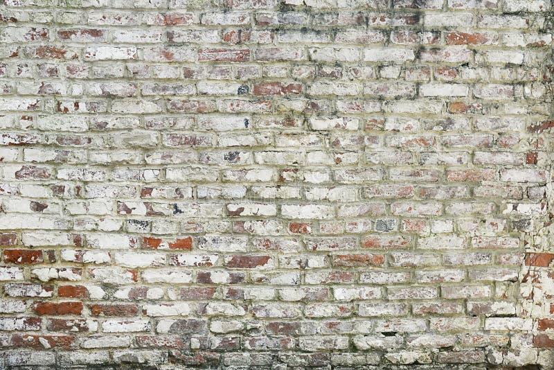 Textura pintada viejo rojo del fondo de la pared de ladrillo imagen de archivo libre de regalías