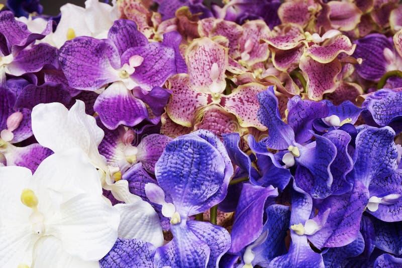 textura plástica azul de la orquídea imagen de archivo