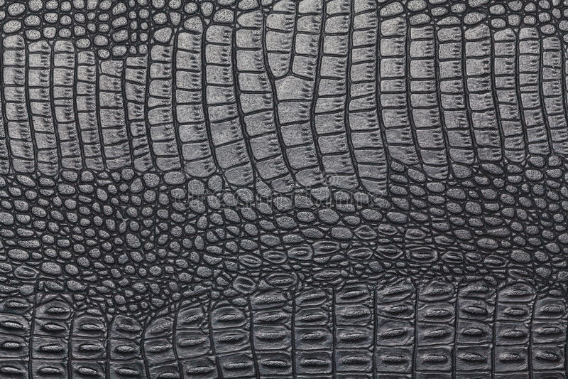 Textura preta da pele do crocodilo fotos de stock
