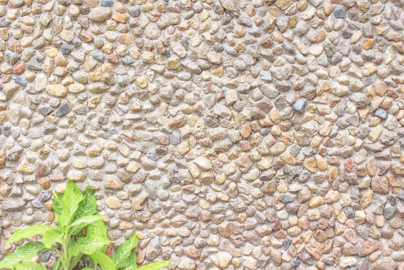 Textura real da parede de pedra da mistura desigual decorativa natural moderna dos testes padrões do estilo no fundo e na folha c imagem de stock