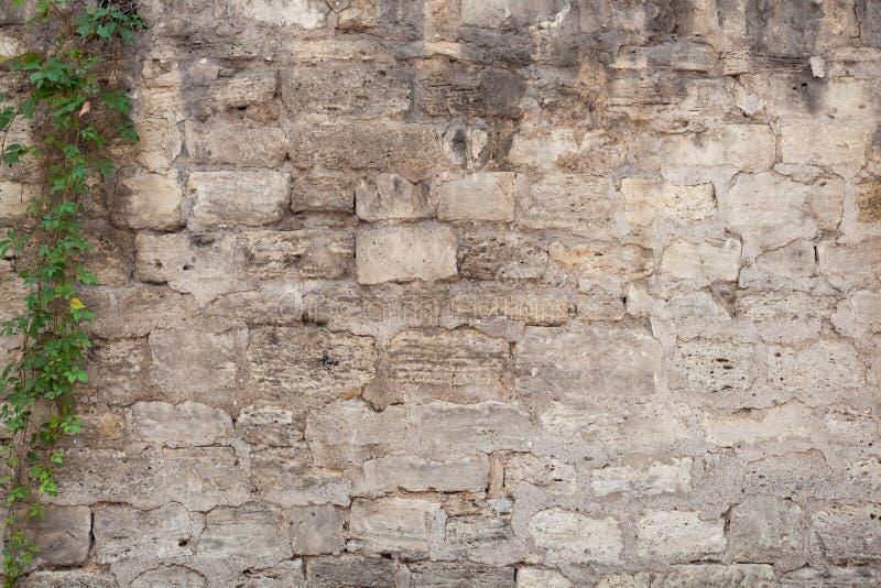 Textura retro cinzenta velha do fundo da parede de tijolo da pedra fotografia de stock royalty free
