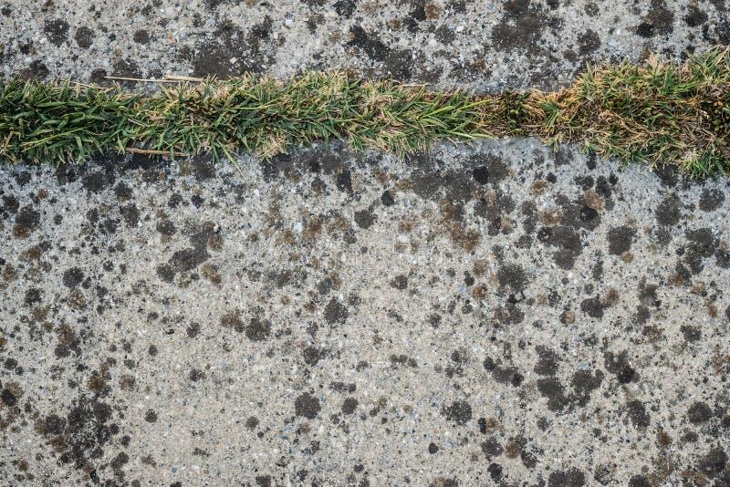 Textura rural do trajeto fotografia de stock