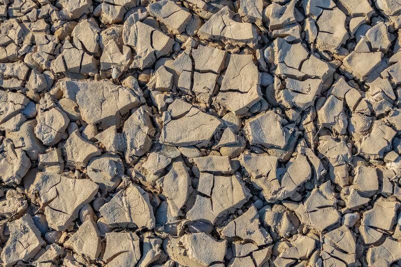 Textura seca de la tierra gris clara imágenes de archivo libres de regalías