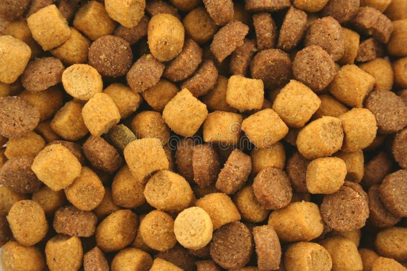 Textura seca do fundo do alimento de gato imagem de stock