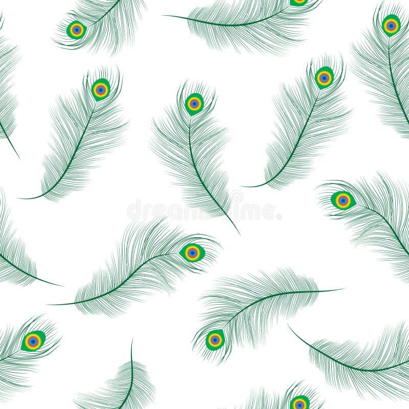 A textura sem emenda da pena do pavão, pavão empluma-se o fundo Penas de um papel de parede do pavão Ilustração do vetor ilustração stock
