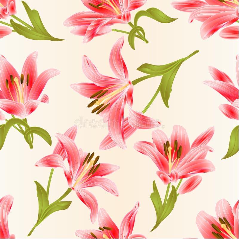 Textura sem emenda Lily Lilium vermelha candidum, flor com folhas e ilustração festiva do vetor do vintage do fundo do botão edit ilustração stock