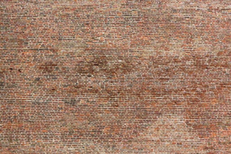 Textura sem emenda velha da parede de tijolo fotografia de stock royalty free