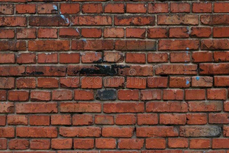Textura velha da parede de tijolo vermelho para a decoração interior da casa Teste padrão da parede de tijolo Fundo do tijolo do  fotos de stock royalty free