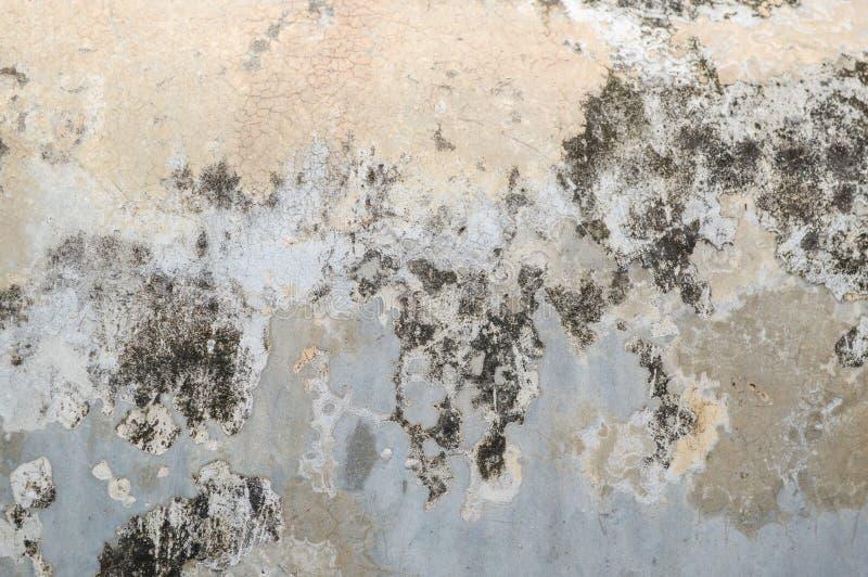Textura velha da parede do cimento fotografia de stock