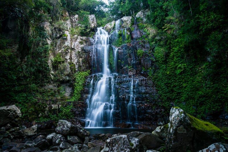 Textura verde com cachoeira e rochas imagens de stock royalty free