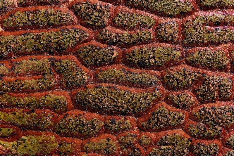 Textura vermelha longa da rocha da escala do dragão fotografia de stock