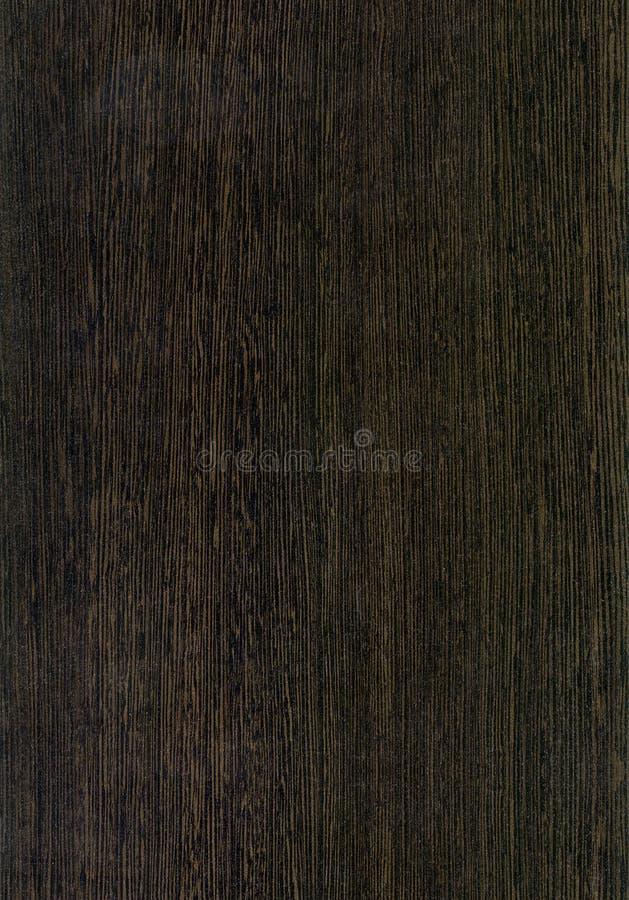 Textura viva de madera de Ðak fotografía de archivo