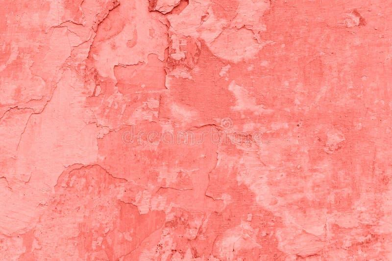 Textura y fondo concretos de la pared Coral Color Background imagen de archivo libre de regalías