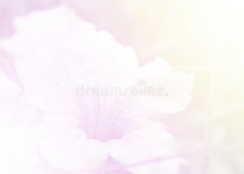Textura y fondo suaves, pi del cuero del estilo del color dulce del primer imagenes de archivo