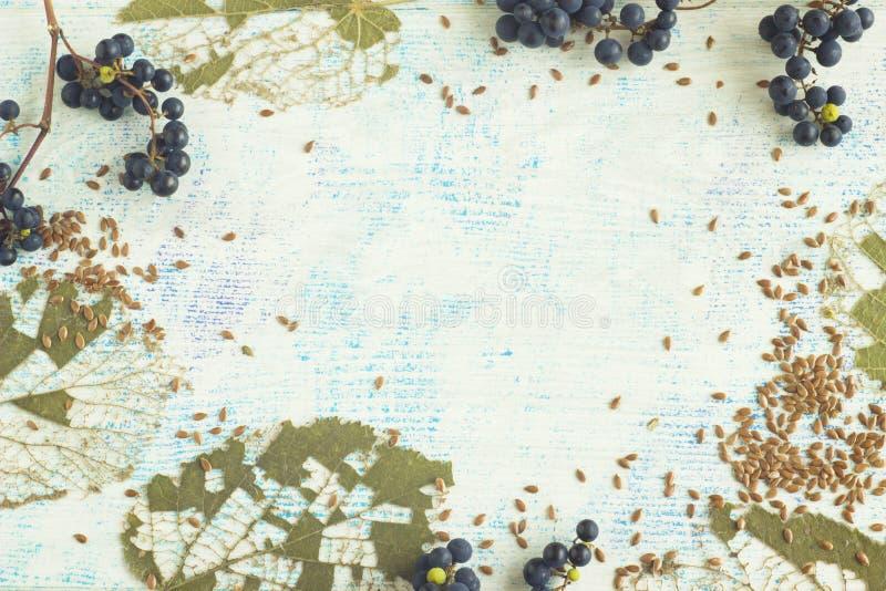 Textural bakgrund med en naturlig design av skogväxter och linfrö arkivbilder