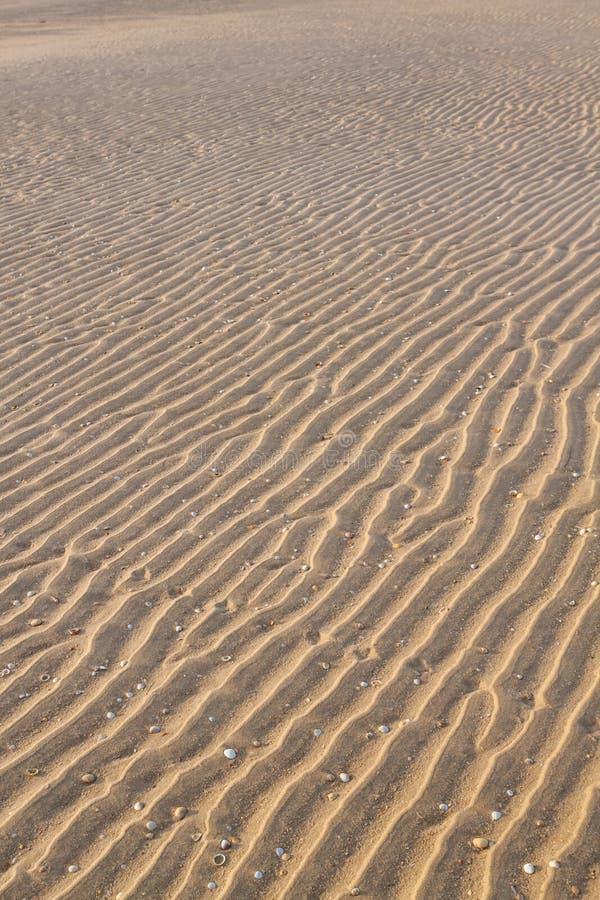 Textural falisty piasek na plaży zdjęcie royalty free