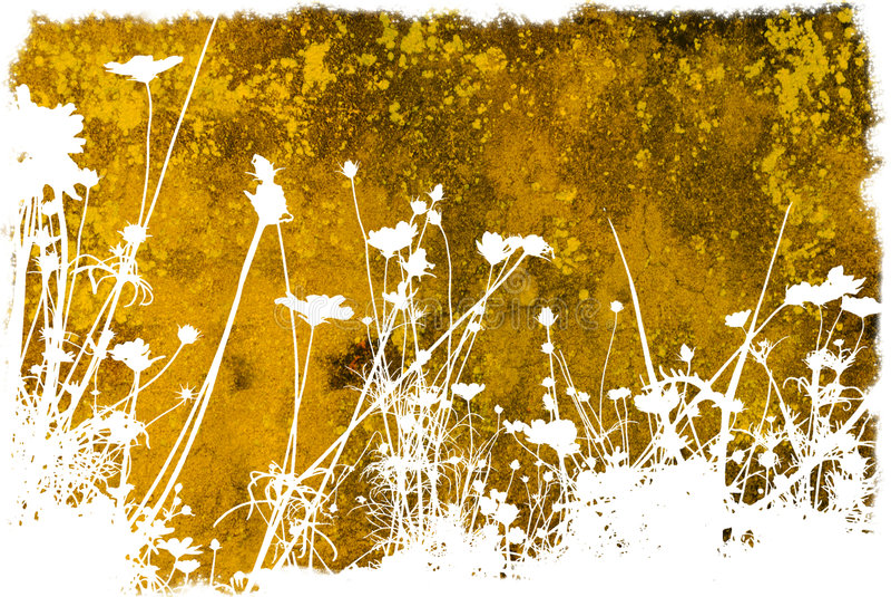 Texturas abstractas de la flor y b ilustración del vector