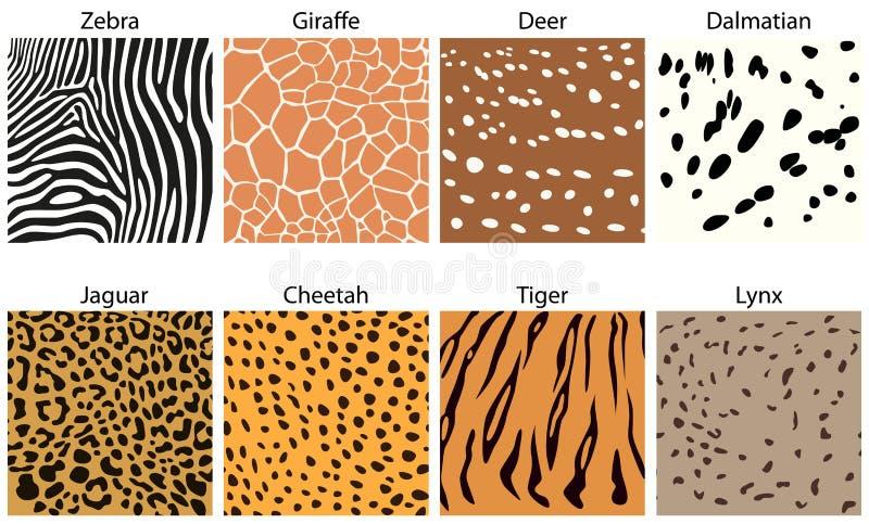 Texturas animais da pele ilustração do vetor