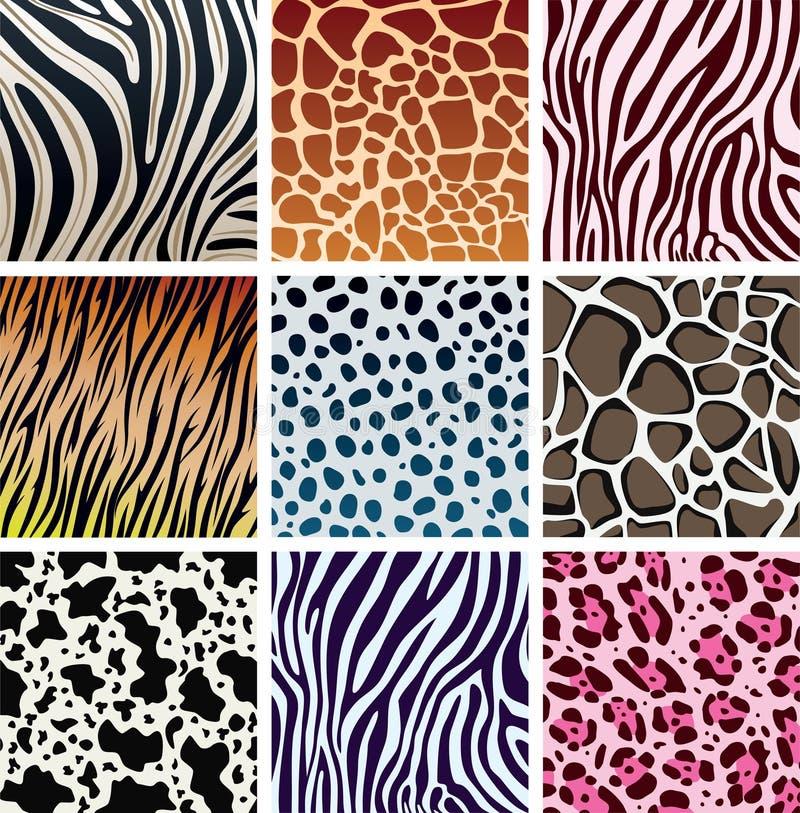 Texturas da pele animal ilustração stock