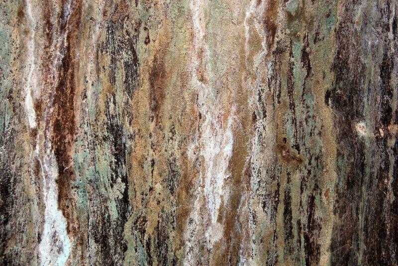 Texturas de bronze do metal fotos de stock royalty free