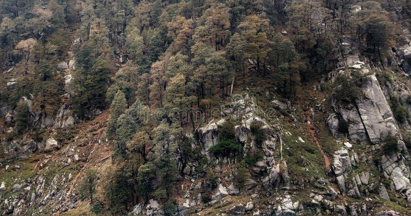 Texturas de la montaña foto de archivo libre de regalías