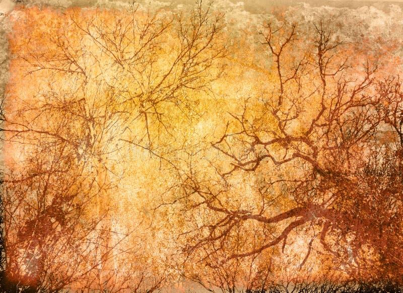 Texturas florais ilustração do vetor