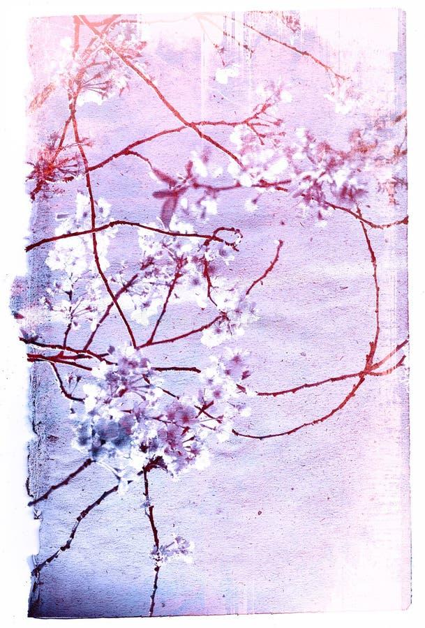 Texturas velhas da flor de papel imagem de stock