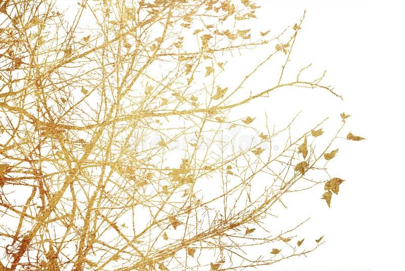 Texturas y fondos abstractos de la flor imagenes de archivo